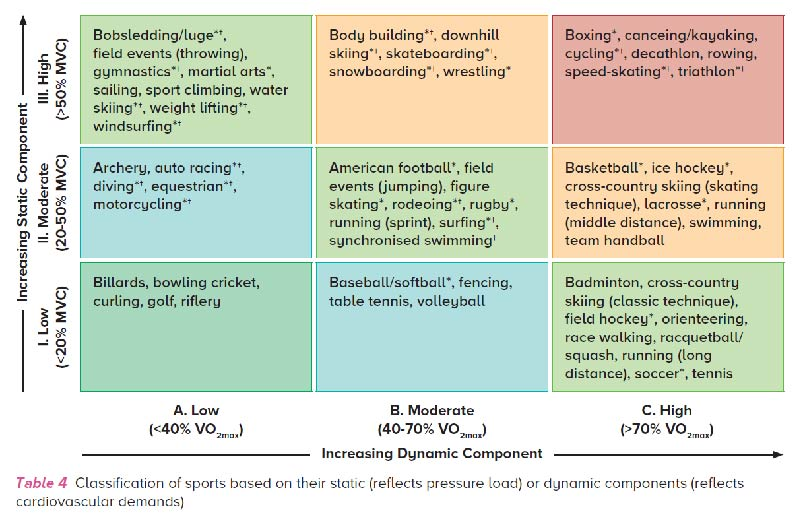 Classification of sports based on their static or dynamic components