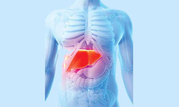 of liver cancer.