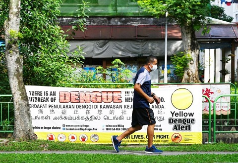 Dengue Outbreak Threatens to be Biggest Yet